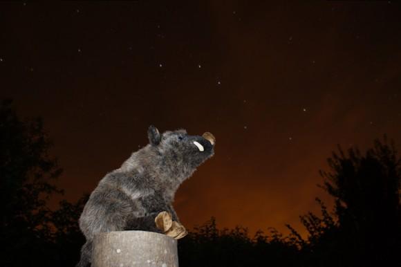 Saladolar observe la constellation de la Grande Ourse.
