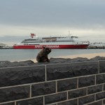 Le ferry est gros, très gros...