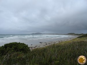 Green Point, face à l'océan indien
