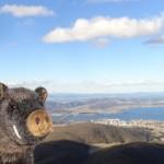 Hobart vue depuis le mont Wellington