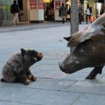 Une rencontre au centre ville