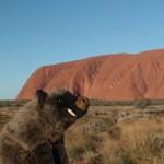 Saladolar et Uluru