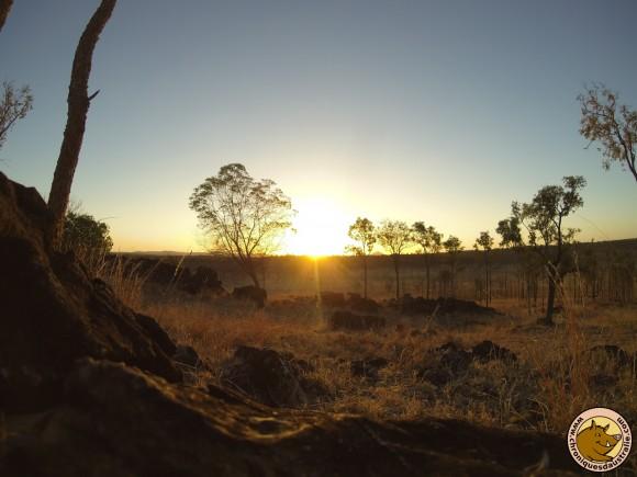 Un coucher de soleil dans le bush