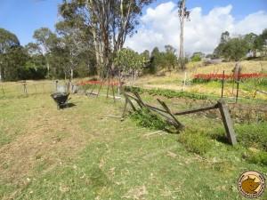 La clôture n'était pas en très bon état !