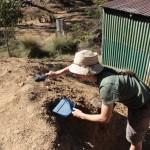 Balayage du terrain des fourmis