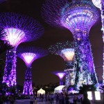 Singapour - Garden By The Bay - de nuit