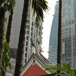 Dragon entre jungle urbaine et végétale