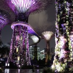 Singapour - spectacle nocturne de Garden By The Bay