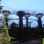 Singapour - Garden By The Bay - de jour